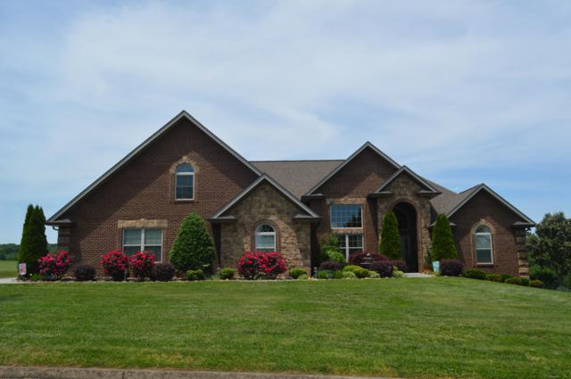 2219 Ohio St, Seymour, TN 37865 (#1079428) :: Shannon Foster Boline Group