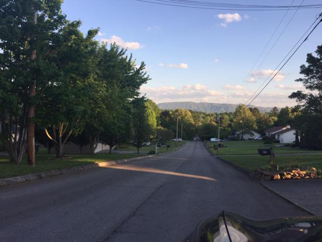 920 Black Oak Ridge Rd, Seymour, TN 37865 (#1079729) :: Billy Houston Group