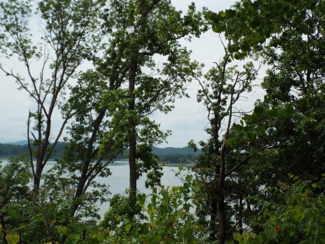 Stone Bridge Drive, Dandridge, TN 37725 (#1079748) :: Shannon Foster Boline Group
