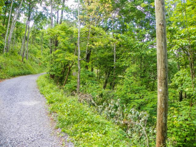 Lot# 32 Sourwood Way, Sevierville, TN 37862 (#1080303) :: The Terrell Team