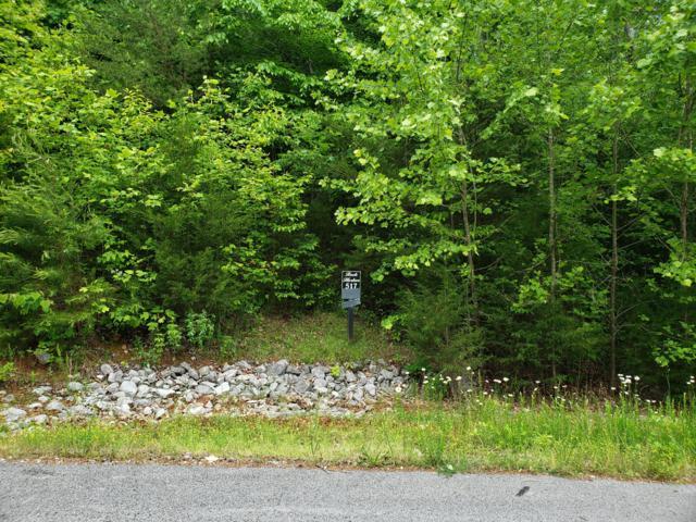 Lot 517 Mystic Star Drive, New Tazewell, TN 37825 (#1080308) :: CENTURY 21 Legacy
