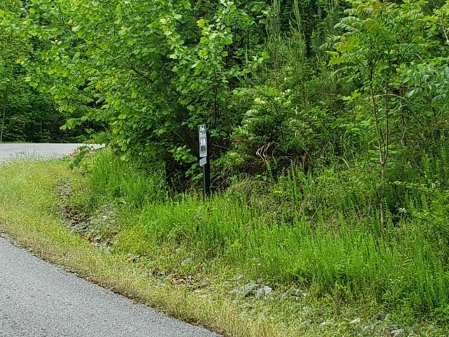 Lot 518 Mystic Star Drive, New Tazewell, TN 37825 (#1080326) :: CENTURY 21 Legacy