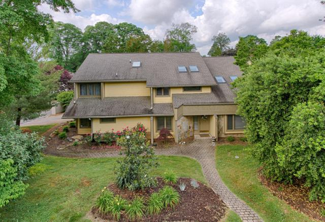 425 Anteelah Tr, Knoxville, TN 37919 (#1080507) :: Billy Houston Group