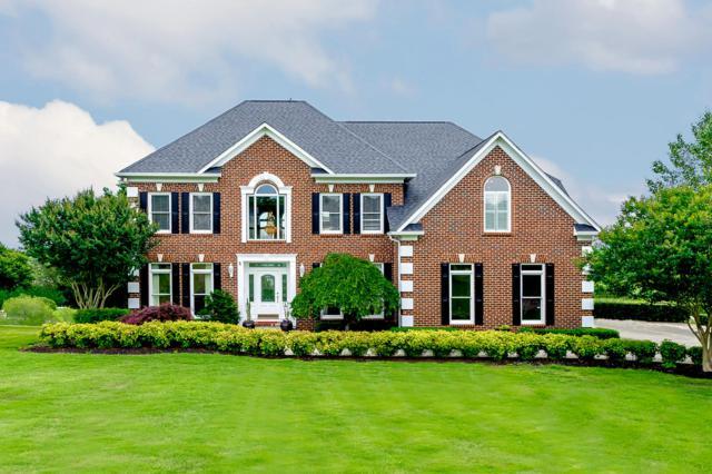 4019 Tidewater Rd, Louisville, TN 37777 (#1080624) :: Shannon Foster Boline Group