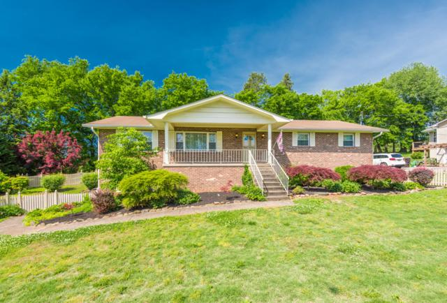 925 Lake Haven Rd, Knoxville, TN 37934 (#1080648) :: Shannon Foster Boline Group