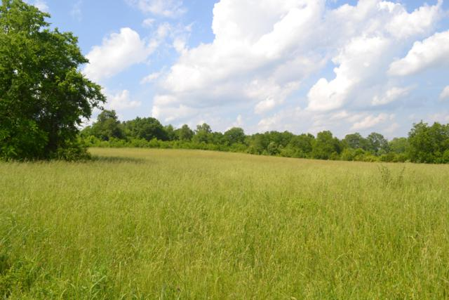 Charlie Hodges Rd, Strawberry Plains, TN 37871 (#1080727) :: Realty Executives