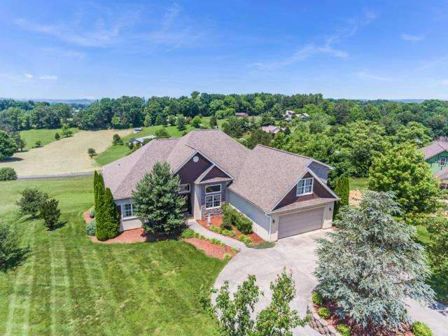 1514 Oakley Manor Court, Sevierville, TN 37862 (#1081092) :: Realty Executives