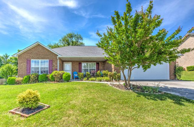 4038 Rainbow Hill Lane, Knoxville, TN 37938 (#1081124) :: Shannon Foster Boline Group