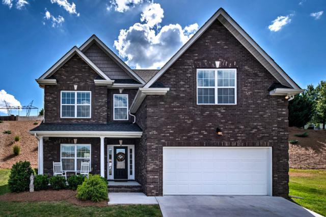 2901 Cambridge Shores Lane, Knoxville, TN 37938 (#1081157) :: Billy Houston Group