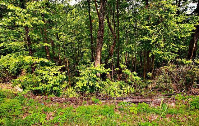 Lots 19-20 N Baden Drive, Gatlinburg, TN 37738 (#1081203) :: The Terrell Team