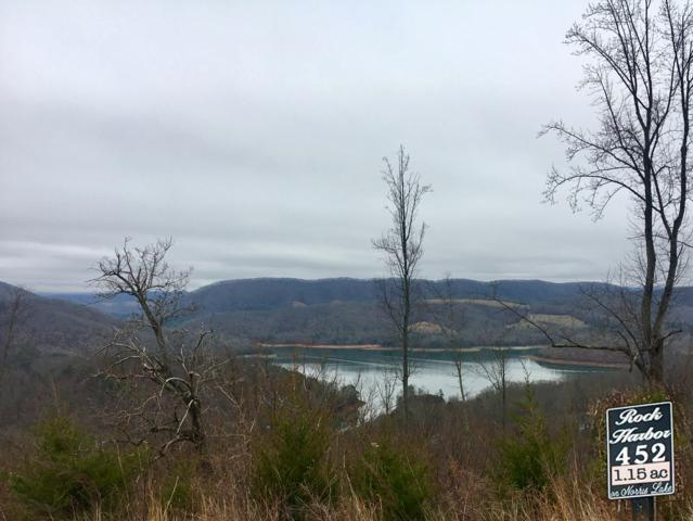 Lot 452 Silver Trail, New Tazewell, TN 37825 (#1081236) :: Shannon Foster Boline Group