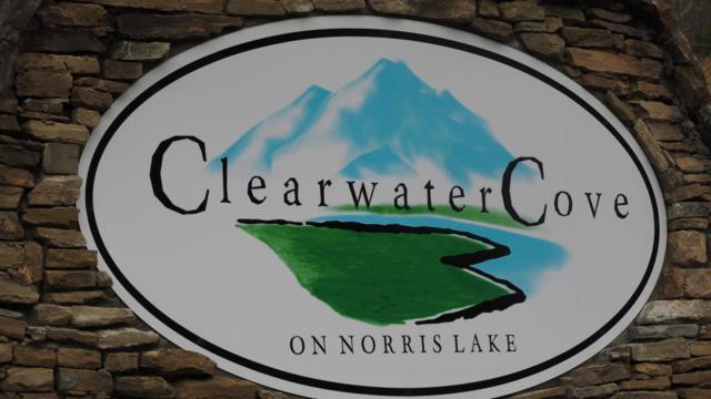 Lot 203 Waterside Lane, LaFollette, TN 37766 (#1081284) :: Realty Executives