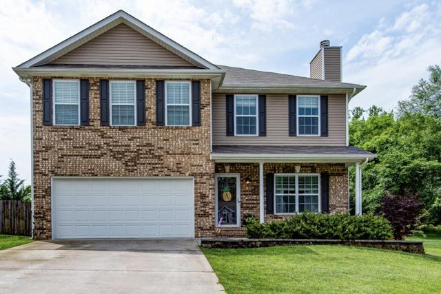 8560 Golden Cloud Lane, Knoxville, TN 37931 (#1081334) :: Billy Houston Group