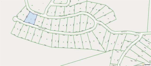 Lot 47 Cloud View Drive, Sevierville, TN 37862 (#1081374) :: The Terrell Team