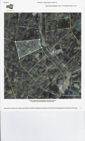 Tolliver Tr, Townsend, TN 37882 (#1081377) :: Venture Real Estate Services, Inc.