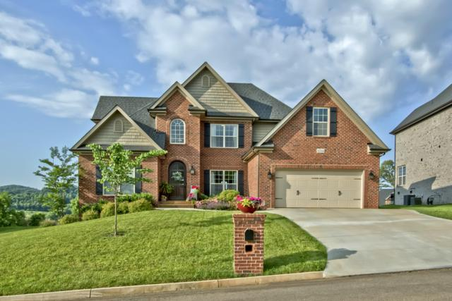 12114 Poplar Meadow Lane, Knoxville, TN 37932 (#1081554) :: Billy Houston Group