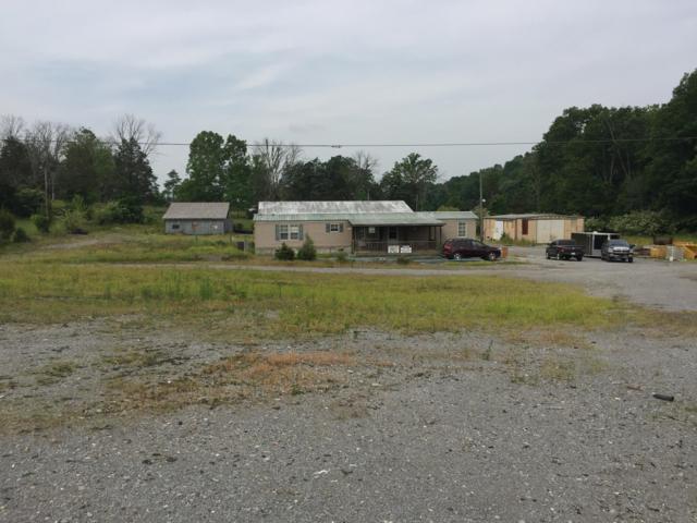 528 Yoakum Lane, Speedwell, TN 37870 (#1081677) :: Billy Houston Group