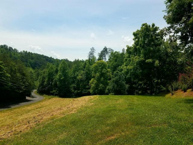 Lot 38 Jobey Green Hollow Rd, Sevierville, TN 37876 (#1081686) :: Shannon Foster Boline Group