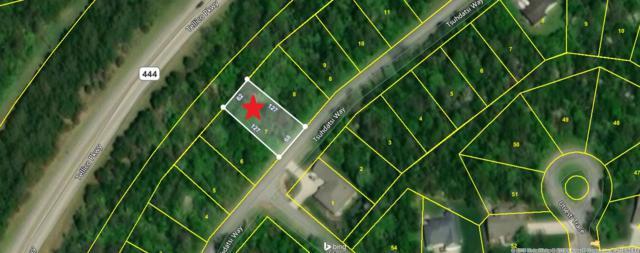 114 Tsuhdatsi Way, Loudon, TN 37774 (#1081743) :: Shannon Foster Boline Group
