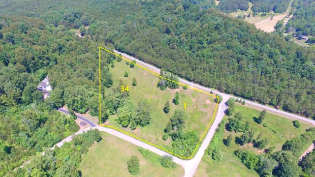 L1&34 Clearwater Cove Drive, Madisonville, TN 37354 (#1082135) :: Realty Executives
