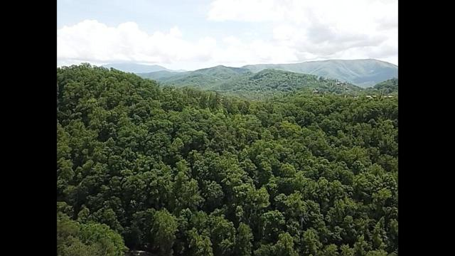 Feld Wynde Close Way, Pigeon Forge, TN 37862 (#1082737) :: Realty Executives