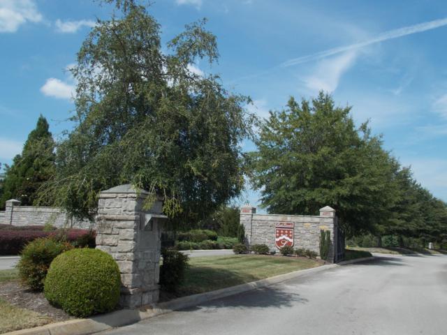 Lot 8 Rankin Ferry Loop, Louisville, TN 37777 (#1082743) :: Realty Executives
