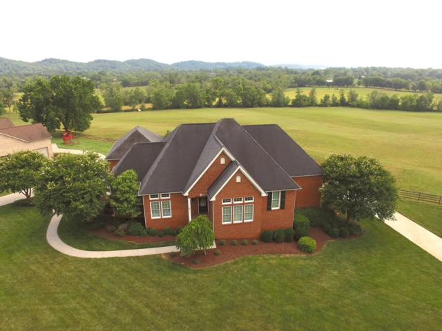 7317 Meadow Creek Tr, Knoxville, TN 37931 (#1082800) :: Billy Houston Group