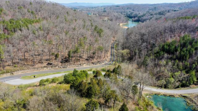 Red Oak Lane, Caryville, TN 37714 (#1082817) :: Tennessee Elite Realty