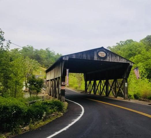 117 Bluegreen Way, Rockwood, TN 37854 (#1082913) :: Realty Executives