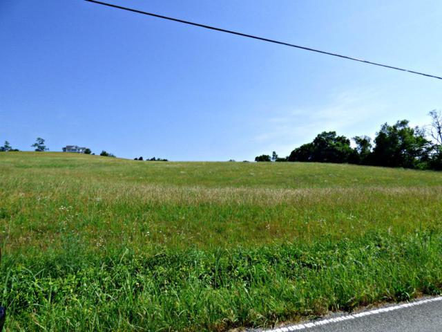 Lots 2 & 3 Owl Hole Gap Rd, Rutledge, TN 37861 (#1083037) :: Billy Houston Group