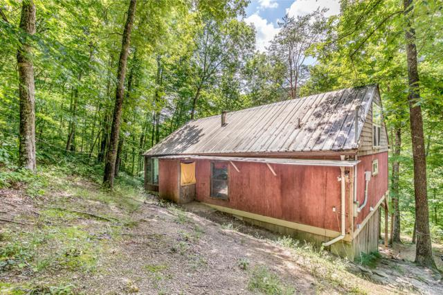 866 Avondale Hollow Rd, Rutledge, TN 37861 (#1083046) :: Billy Houston Group