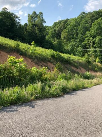 Lot 71 Cameron Loop, LaFollette, TN 37766 (#1083098) :: Shannon Foster Boline Group