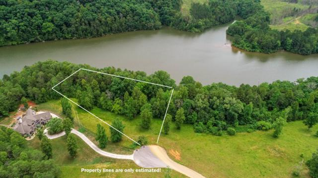 Lot 10 Clearwater Cove Dr, Madisonville, TN 37354 (#1083341) :: Realty Executives