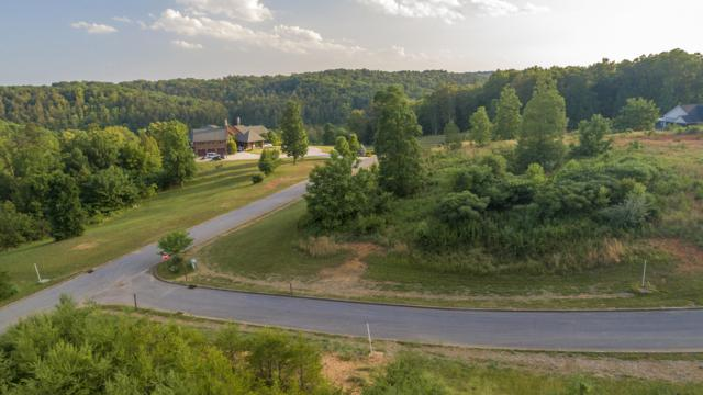 180 Red Hill Lane, Greenback, TN 37742 (#1083404) :: Realty Executives
