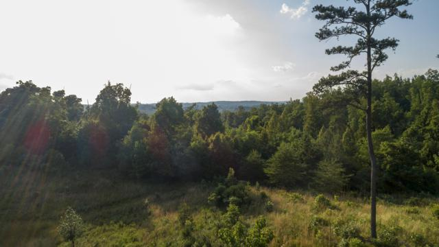 544 Red Hill Lane, Greenback, TN 37742 (#1083414) :: Realty Executives