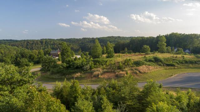 328 Red Hill Lane, Greenback, TN 37742 (#1083415) :: Realty Executives