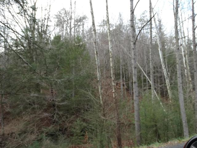 Ky 1344 Near Meadow Branch, Pineville, KY 40977 (#1083550) :: Billy Houston Group