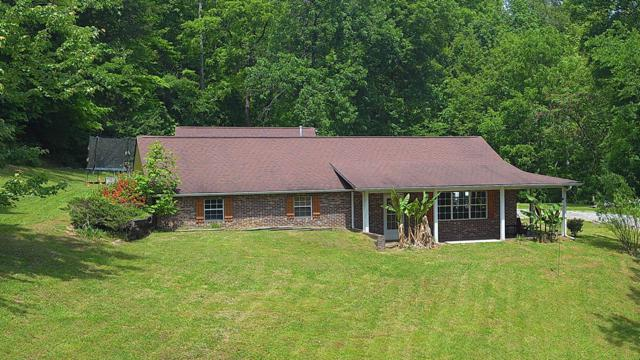 3708 Roberts Rd, Corryton, TN 37721 (#1083607) :: Shannon Foster Boline Group