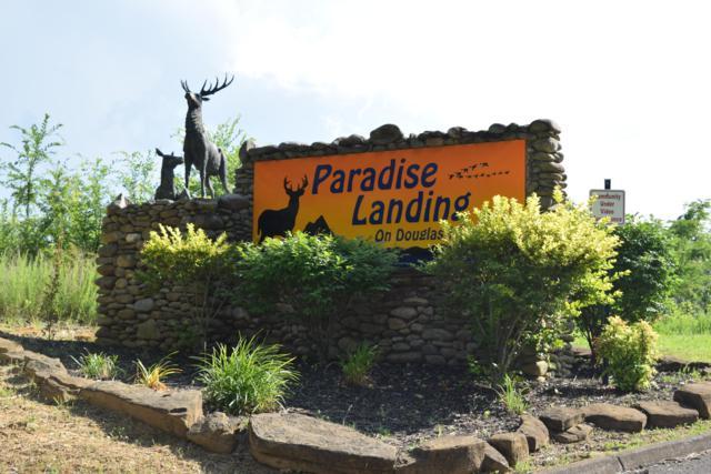 Turtle Dove Tr, Dandridge, TN 37725 (#1083770) :: Venture Real Estate Services, Inc.