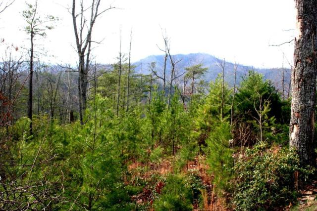 1325 Morning Dove Way, Sevierville, TN 37862 (#1083775) :: Venture Real Estate Services, Inc.