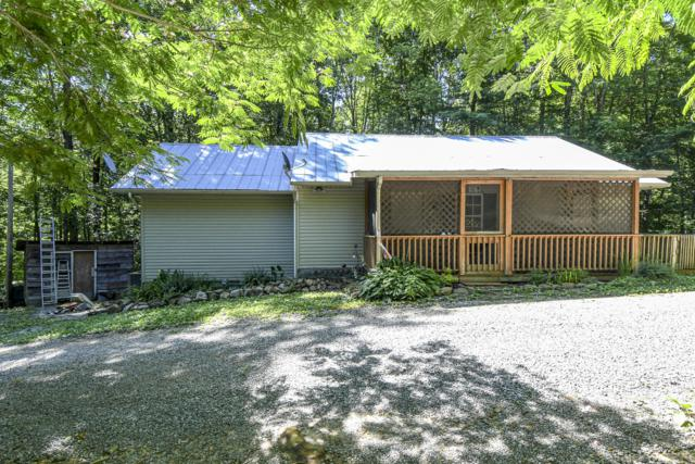 1631 Old Chilhowee Rd, Seymour, TN 37865 (#1083811) :: Shannon Foster Boline Group