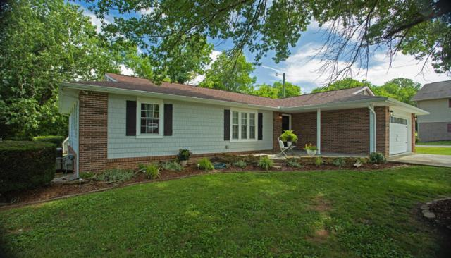 336 Chapman Overlook Drive, Seymour, TN 37865 (#1083846) :: Shannon Foster Boline Group