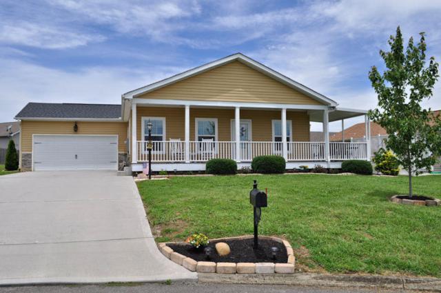 1408 Abbie Rae Drive, Sevierville, TN 37876 (#1083959) :: Venture Real Estate Services, Inc.
