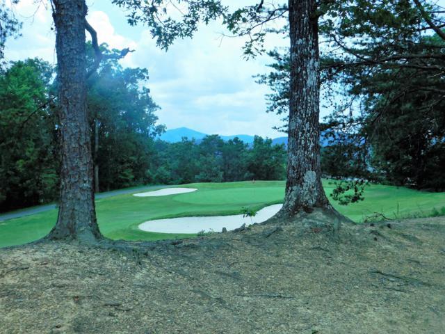 830 Golf View Blvd Unit 3106, Pigeon Forge, TN 37863 (#1083975) :: The Terrell Team