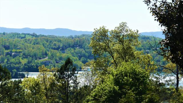 Deerfield Way, LaFollette, TN 37766 (#1083978) :: Shannon Foster Boline Group