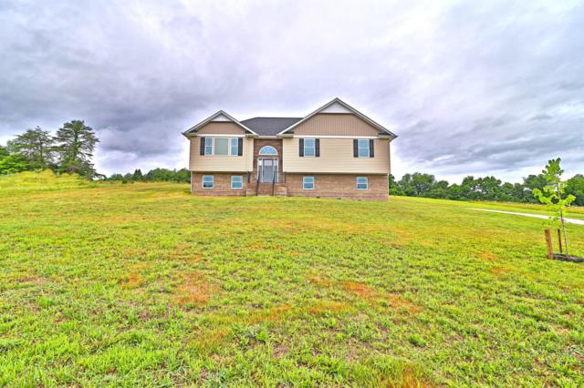 553 Corntassel Rd, Vonore, TN 37885 (#1083992) :: Venture Real Estate Services, Inc.