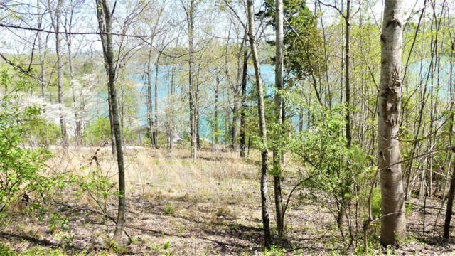 Deer Hill Lane, LaFollette, TN 37766 (#1083999) :: Shannon Foster Boline Group