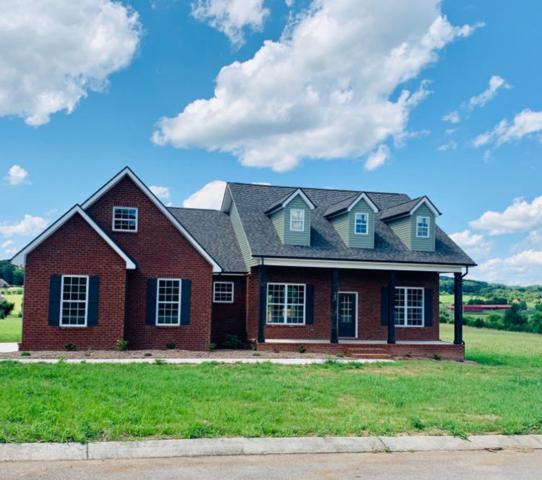 105 Shannadoah Lane, Madisonville, TN 37354 (#1084007) :: Venture Real Estate Services, Inc.