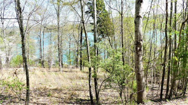Deer Hill Lane, LaFollette, TN 37766 (#1084009) :: Shannon Foster Boline Group