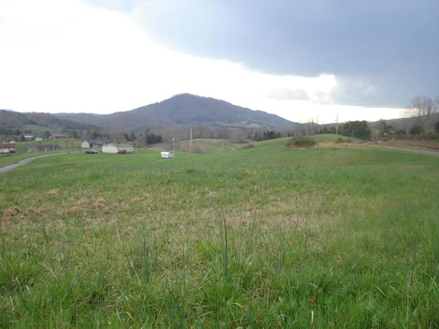 L 33 Pearlie Lane, Tazewell, TN 37879 (#1084023) :: Venture Real Estate Services, Inc.